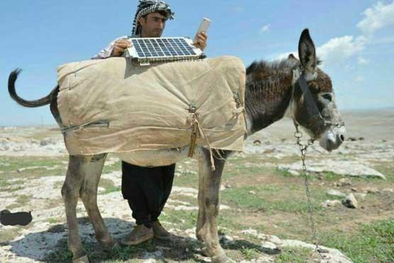 الاغی مجهز به پنل خورشیدی ! +عکس