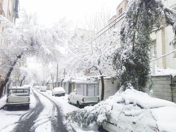 سقوط درخت روی یک خودرو بهدلیل بارش برف در افسریه تهران